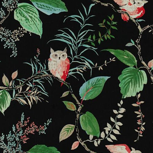 Kravet Owlish Black Fabric - Fabric