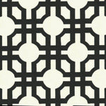 Kasmir Avant Trellis Licorice Fabric