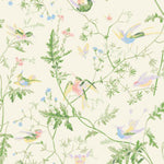 Cole & Son Hummingbirds Cream & Soft Multi Fabric