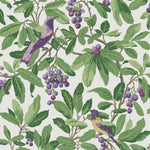 Cole & Son Royal Garden Green/Purple Wallpaper