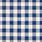 Kasmir COPA CHECK IO ROYALTY Fabric