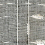 Kasmir Crosstown Sheer Vanilla Fabric