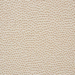 Schumacher Stingray Champagne Fabric