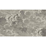 Cole & Son Nuvolette Gilver & Charcoal Wallpaper