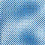 Schumacher Serendipity Blue Fabric