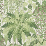 Cole & Son Fern Leaf Green And Olive Wallpaper