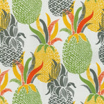 Tracy Porter Od Island Time Citrus Fabric