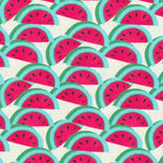 Pkl Studio Watermelon Fuchsia Fabric