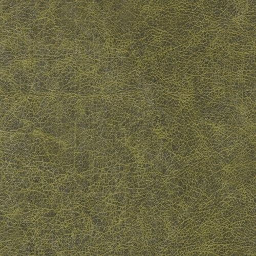 Winfield Thybony Enduring Alligator Skin Wallpaper - Wallpaper