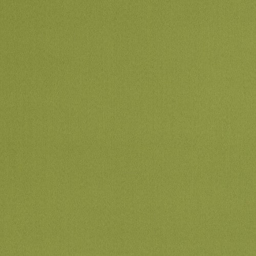 Trend 04770 Lime Fabric - Fabric