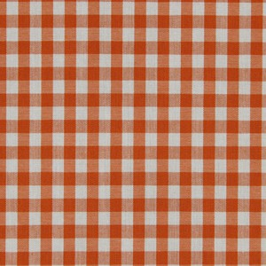 Robert Allen Go Gingham Watermelon Fabric - Fabric