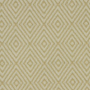 Robert Allen Raised Geo Zest Fabric - Fabric