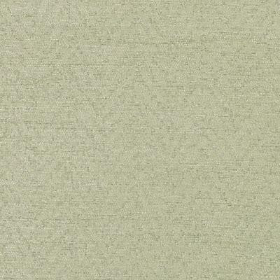 Bailey & Griffin Bu15835 533-Celery Fabric - Fabric