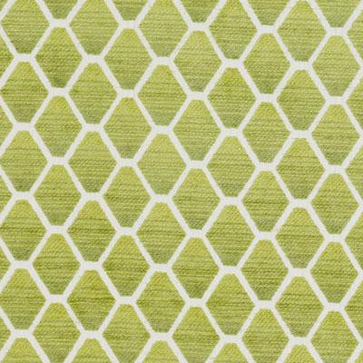 Bailey & Griffin 190238H 554-Kiwi Fabric - Fabric