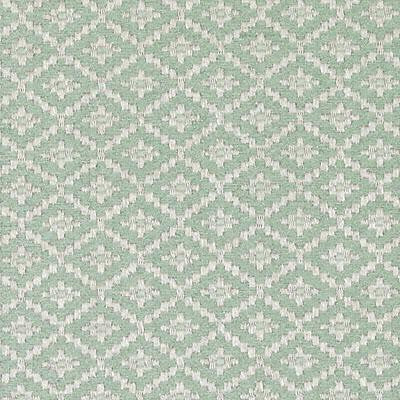 Bailey & Griffin Bu15830 24-Celadon Fabric - Fabric