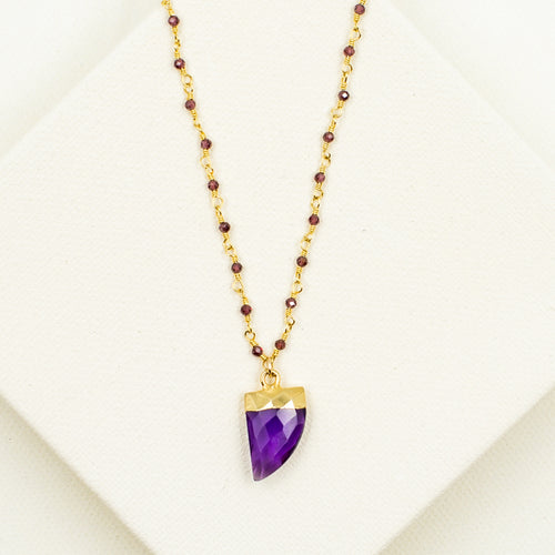 Long Amethyst Horn with Faceted Garnet Necklace