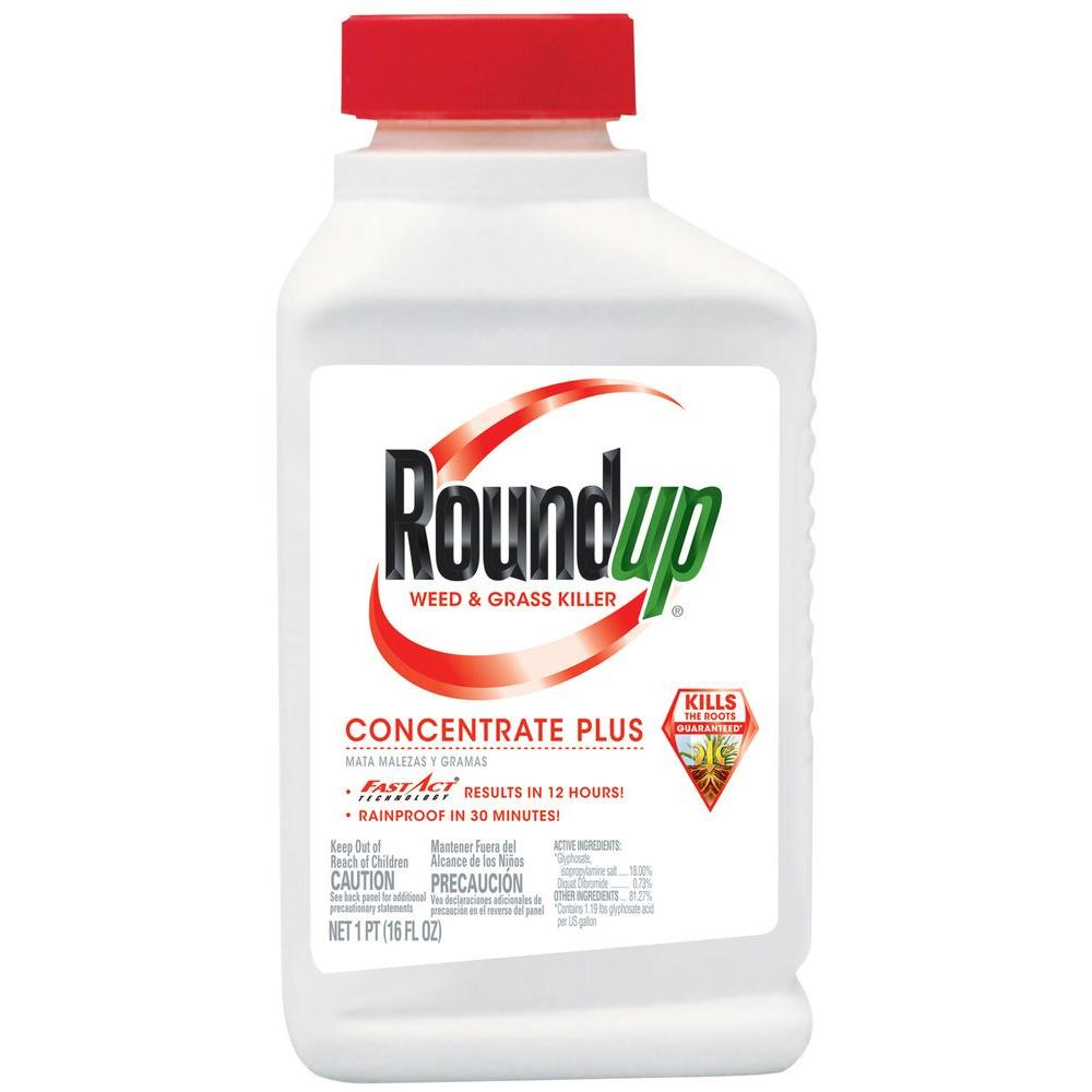 Roundup Weed & Grass Killer 16oz Concentrate
