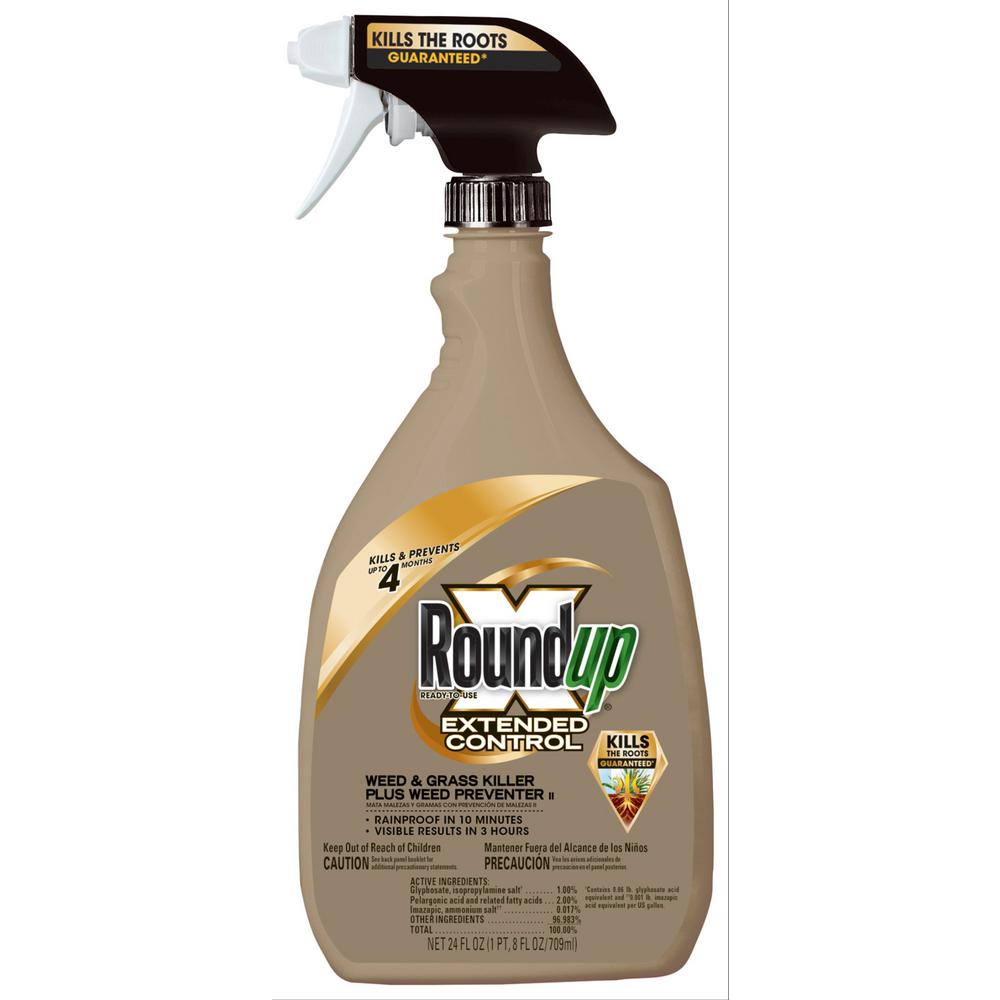 Roundup Extended Control Weed & Grass Killer 24 oz