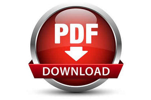 Example PDF Download