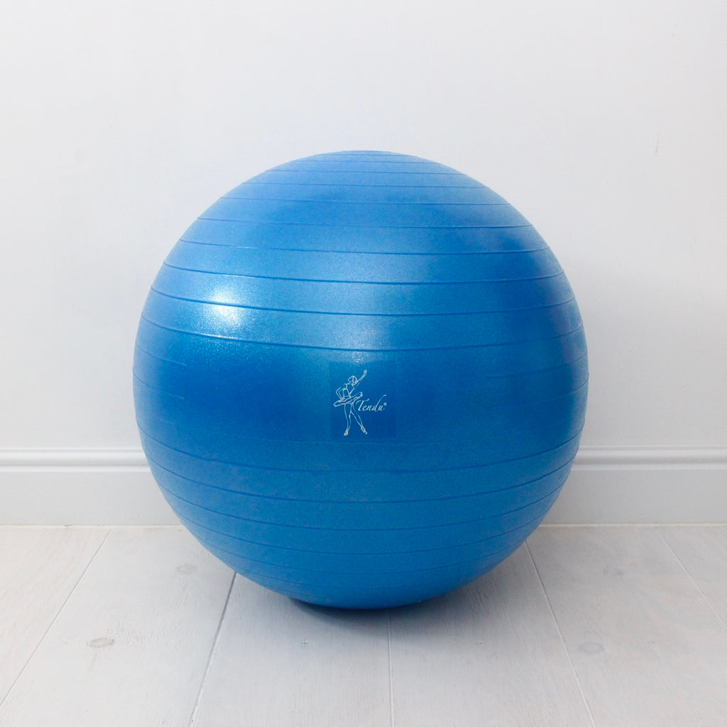 Tendu Stability Ball