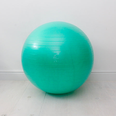 Tendu Soft Exercise Ball