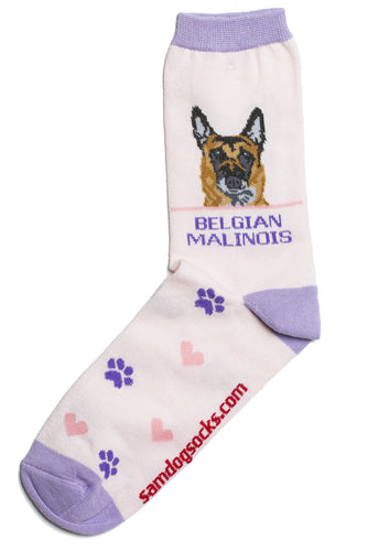 Belgian Malinois Dog Socks - samnoveltysocks.com