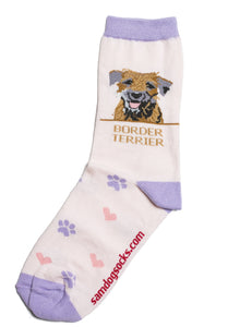 Border Terrier Dog Socks - samnoveltysocks.com