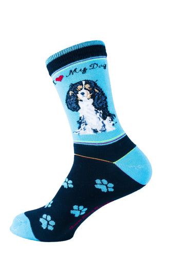 Cavalier King Charles Black Dog Socks Signature - samnoveltysocks.com