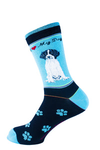 Springer Spaniel Black Dog Socks Signature - samnoveltysocks.com