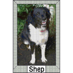 Example of Bespoke Design - Shep the Dog