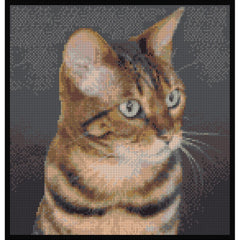 Example of Bespoke Design - Vala the Bengal cat (NeedlePoint)