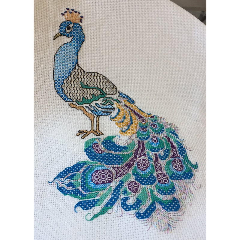 Peacock in Blue