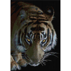 Tiger in the Night Cross stitch Kit