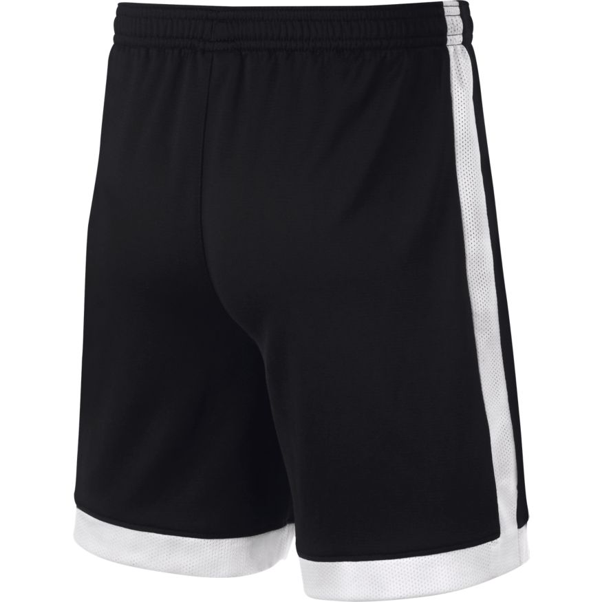 Nike Dri-FIT Academy Shorts (Youth)