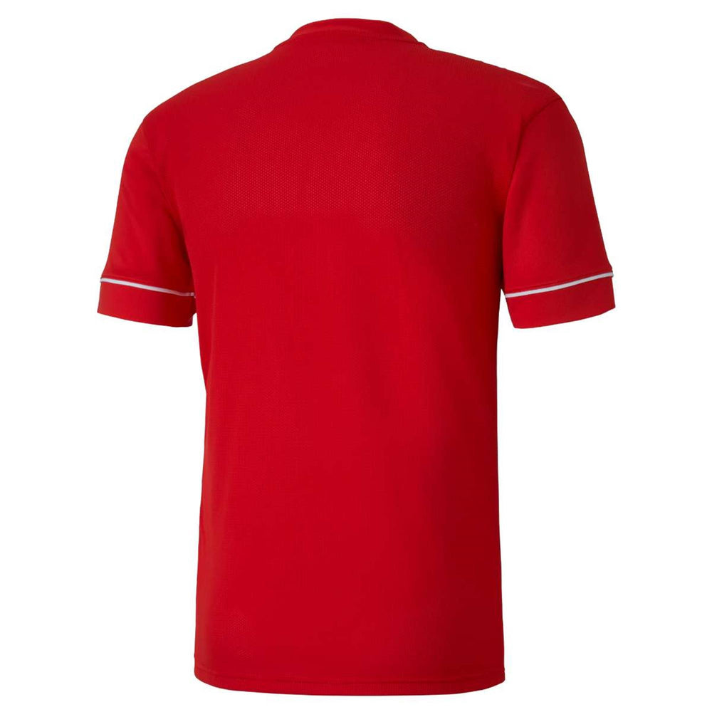 PUMA TEAMGOAL Training Jersey Core