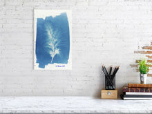 Load image into Gallery viewer, FeatherCyanotypes 8