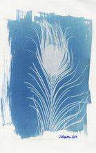 Load image into Gallery viewer, FeatherCyanotypes 10