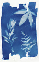 Load image into Gallery viewer, Floral_arrangement4_cyanotype