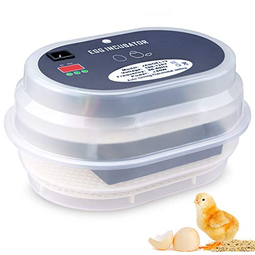 Digital Egg Incubator Automatic Chicken Quail Egg Hatcher - Morealis
