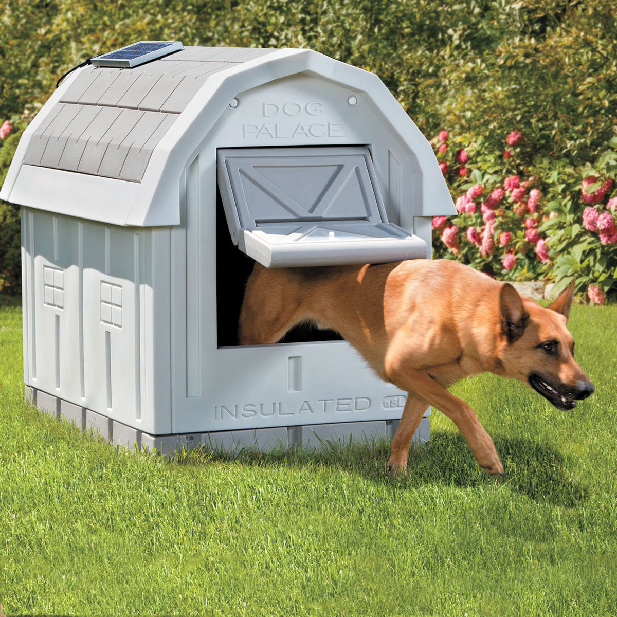 Premium Warm Dog House for Winter Outdoor Heated Dog House Large Insulated - Morealis