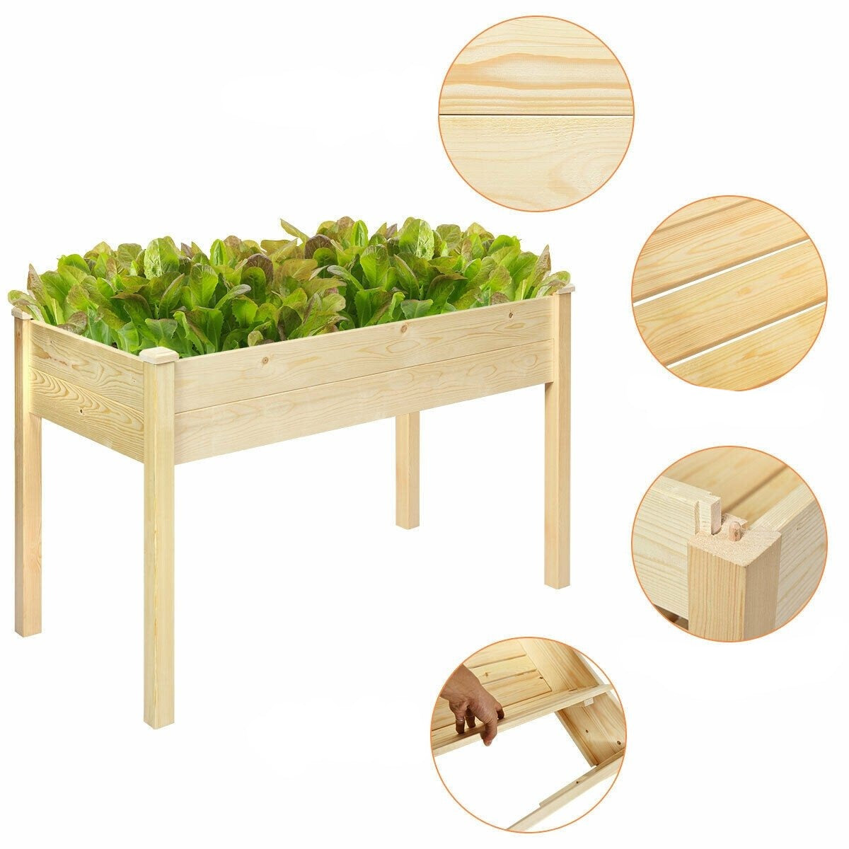 Plaint Raised Garden Bed Vegetable Wooden Elevated Grow Vegetable Planter - Morealis