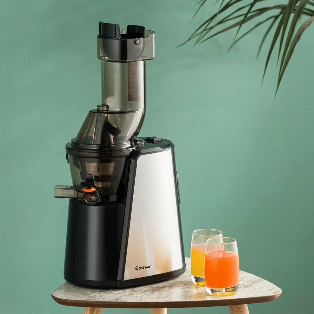 Premium Juicer Cold Presser Masticating Juice Extractor - Morealis
