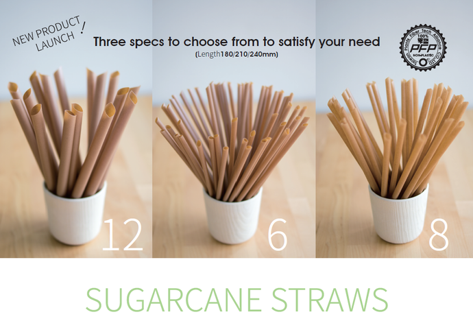 Plant Plus Sugarcane fiber straw