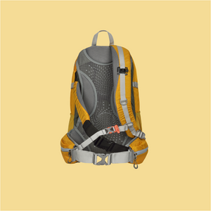 EVE - Alpina Backpack Dufour 30 L Yellow/Brown (M-L)