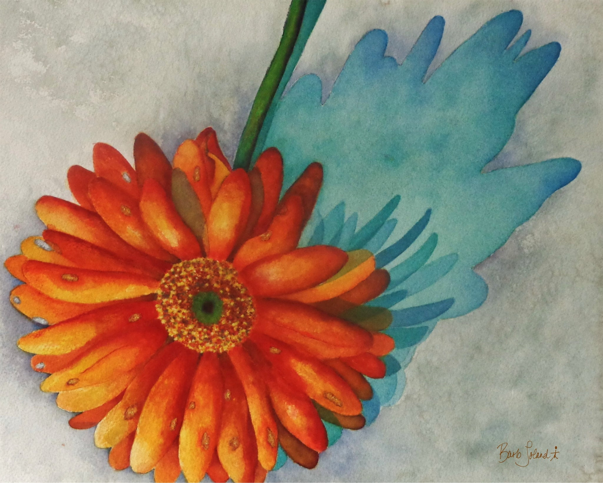 A watercolor painting of a Gerbera daisy & its shadow.