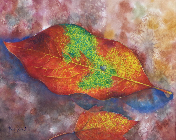 A watercolor painting of a colorful leaf found on a fall hike thru the woods.