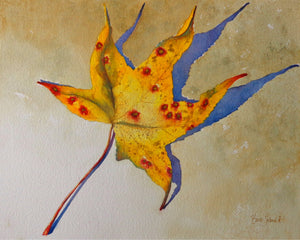 A watercolor painting of a fall leaf & its shadow.