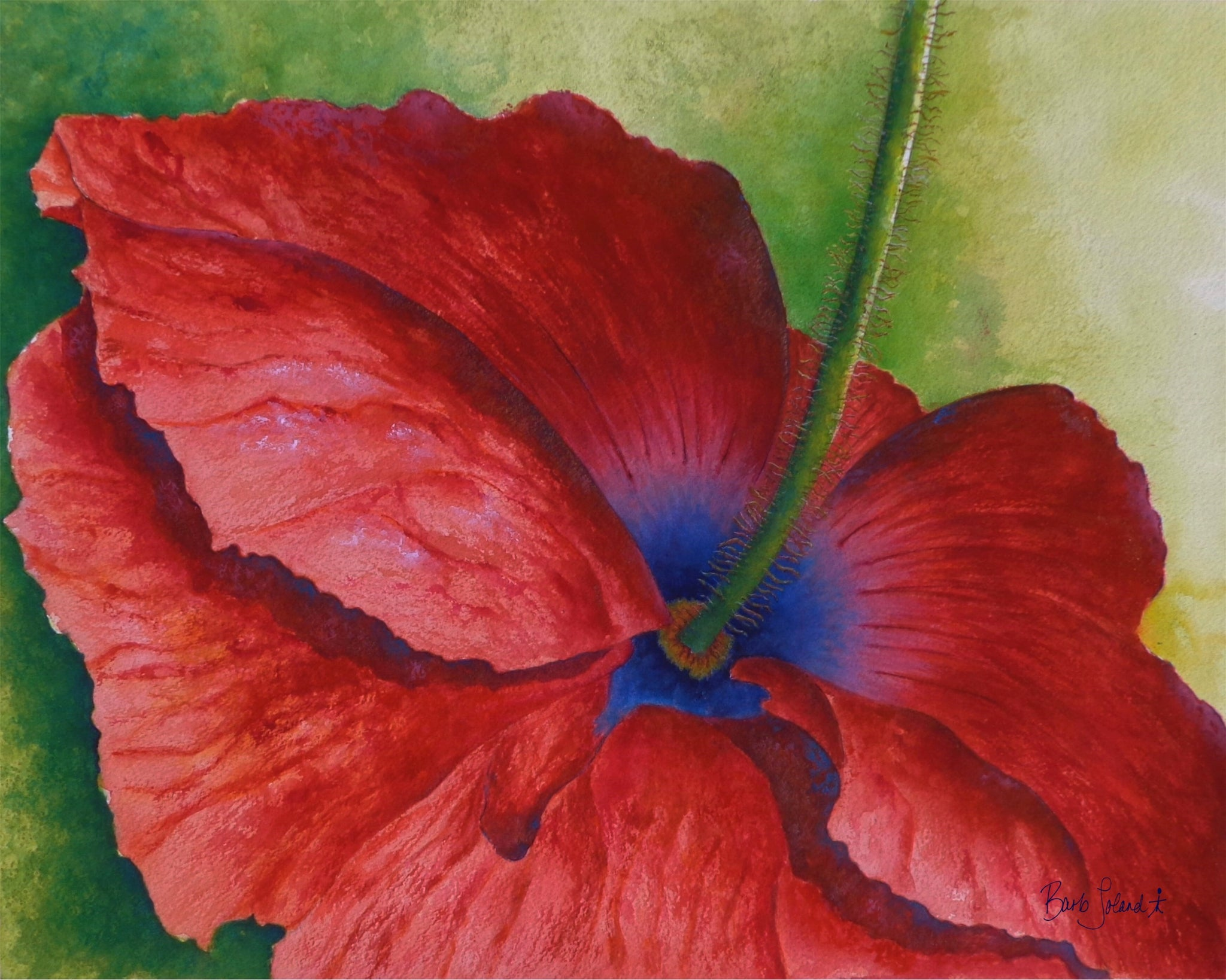 A watercolor painting of a bright red & blue poppy to personally enjoy for its beauty, or you may want to remember someone you love who served proudly in the armed forces.