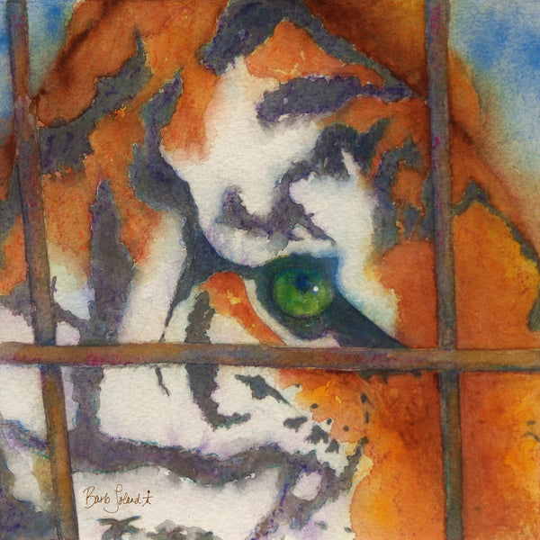A watercolor painting of a cage tigress patiently watching & waiting for her goals & dreams to manifest.