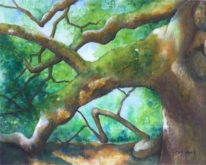 A watercolor painting of the Angel Oak on John's Island near Charleston, SC.
